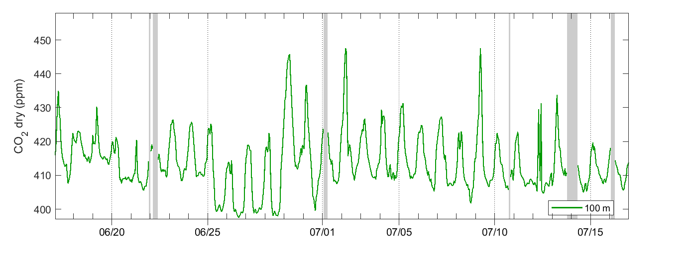 Norunda Carbon dioxide